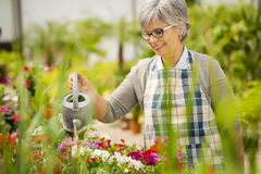 Mature woman watering flowers Royalty Free Stock Photos