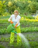 Mature woman watering plant royalty free stock photography