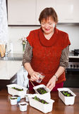 Mature woman watering seedlings Stock Photo