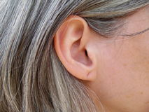 Mature Womans Ear Royalty Free Stock Photography