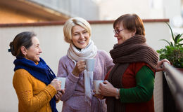 Mature women drinking tea. Two mature women drinking tea on a balcony and smiling Stock Photos