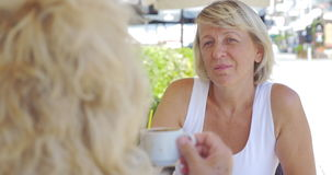 Mature women friends having drinks and talking in outdoor cafe stock footage