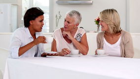 Mature women gossiping during afternoon tea stock video footage