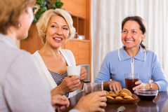 Mature women having coffee break Royalty Free Stock Image