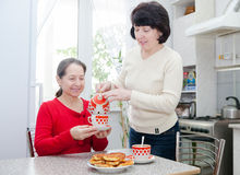 Mature women at   kitchen table. Two mature women talking over coffee in   kitchen Stock Photos