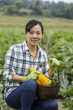 Mature women with Zucchini in Basket Stock Photography
