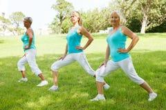 Mature womens doing flexibility exercises Royalty Free Stock Photos