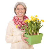 Matured woman with daffodils Stock Photo