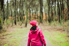 Matured woman hiking in the forest Stock Image
