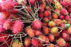 Maturi rossi aspettano ai frutti rambuttan in un mazzo Fotografie Stock