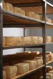 Maturing cheese storehouse Stock Images