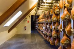 Maturing room of hams in Sauris. Sauris Italy 4th March 2018 - Maturing room of hams in the Wolf factory Royalty Free Stock Image