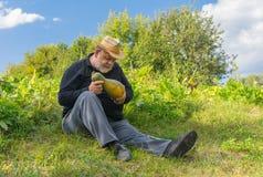 Maturité de contrôle de récolte de courge d'agriculteur se reposant sur le bord de champ photo libre de droits