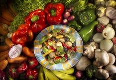 matvegetarian Arkivfoton