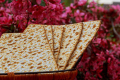 Matza bread for passover celebration Stock Images