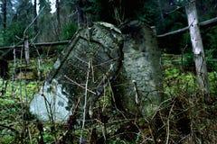 Matzevot esquecido na floresta Fotos de Stock