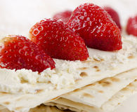 Matzoh Royalty Free Stock Photography