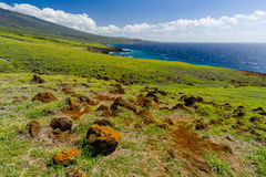 Maui Stock Image