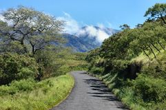 Maui Backcountry Road. A rarely traveled and unpaved one way road, captured in the beautiful and remote southeastern end of Maui in the Hawaiian Islands Royalty Free Stock Photography