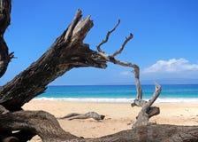 Maui beach, Hawaii. Beautiful day to Maui, Hawaii. Big beach Stock Image