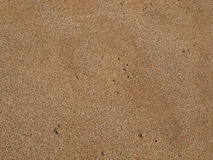 Maui Beach Sand Royalty Free Stock Images