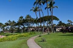 Maui Beach View. With buildings, HI Stock Photos