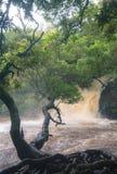 Maui-Flüsse über dem Fließen während der Regenzeit lizenzfreie stockfotos