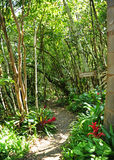 Maui-Garten Eden stockfotografie