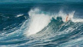 MAUI, HAWAI, U.S.A. - 10 DICEMBRE 2013: I surfisti stanno guidando le onde Immagini Stock
