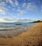 Maui Hawaii Beach Stock Images