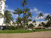 Maui Hawaii beach. With blue sky and clouds. Resorts and palm trees in background Royalty Free Stock Photos
