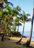 Maui, Hawaii. Beautiful day to Maui, Hawaii Stock Images