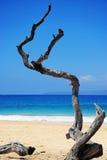 Maui Hawaii. Beautiful day to big beach, Maui, Hawaii Royalty Free Stock Images