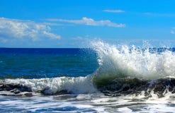 Maui Hawaii - hav vågor Fotografering för Bildbyråer