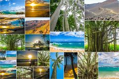 Maui Hawaii pictures collage Royalty Free Stock Photo