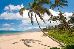 Maui hawaii strand Arkivbild