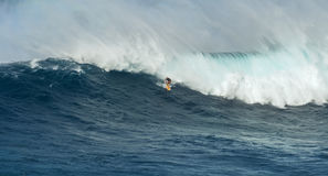 MAUI, HAWAII, USA - DECEMBER 15, 2013: Unknown surfer is riding Royalty Free Stock Images