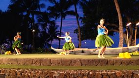 Maui Luau stock video footage