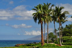 Maui morgon Royaltyfri Foto