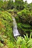 Maui most i siklawa Obrazy Stock