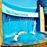 Maui ocean center. Must be on one of the first place to visit in the list of parents with children ,it will be great for education and exploration of ocean life royalty free stock image