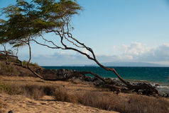 Maui. Ocean view in Kihei,  Island of Maui, Hawaii Stock Photography