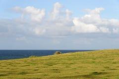 Maui Oceanscape Fotografia Stock