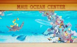 Maui-Ozeanmitte Lizenzfreies Stockfoto