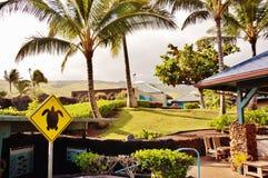 Maui-Ozeanmitte Stockfotos