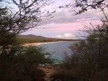 Maui plaża przy zmierzchem Zdjęcie Royalty Free