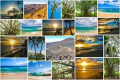 Maui rappresenta il collage Immagine Stock Libera da Diritti