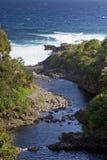 Maui's Lush Coast Royalty Free Stock Image