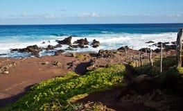 Maui's Shore Stock Photo