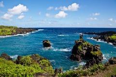 Maui's Vibrant Coastline Stock Photo